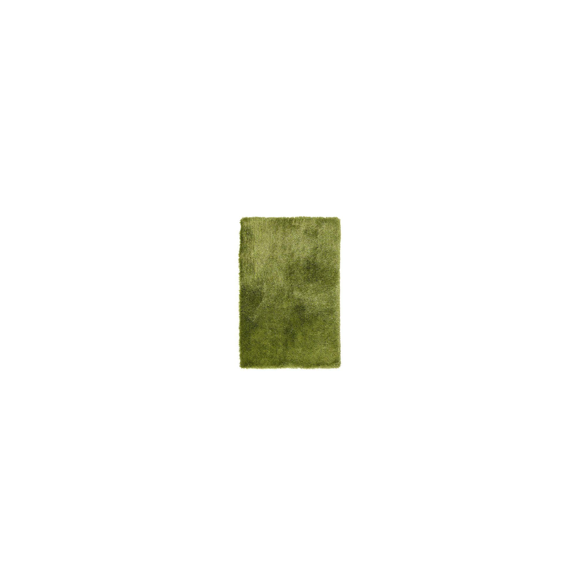 Oriental Carpets & Rugs Arctic Green Tufted Rug - 150cm L x 90cm W