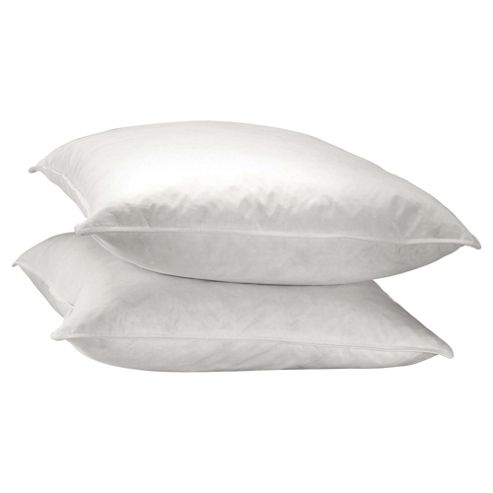Goose & Duck Feather and Down Pillows: Furnishings ...