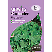 Herb Coriander Fine Leaved