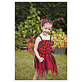 Ladybird role play costume