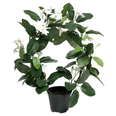 buy 38cm stephanotis ring artificial potted plant from our. Black Bedroom Furniture Sets. Home Design Ideas