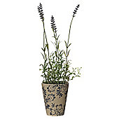 34cm Lavender In Ceramic Pot - Blue