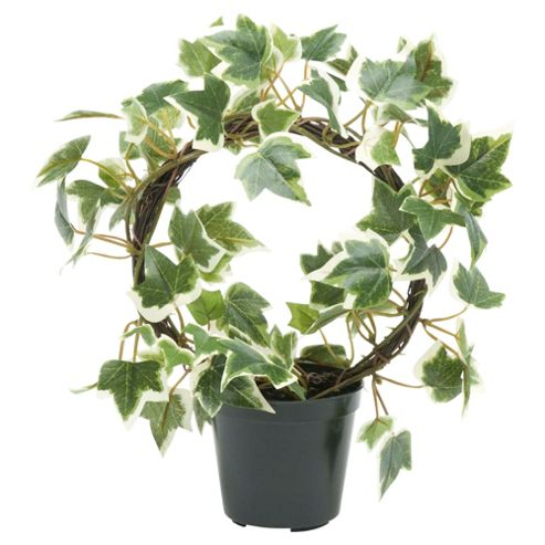 23cm Needlepoint Ivy Ring Artificial Plant - Variegated