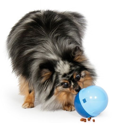 Aspen Pet Wobbling Treatball Dog Toy in Blue