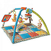 Infantino Go GaGa Deluxe Twist and Fold Baby Playmat and Gym