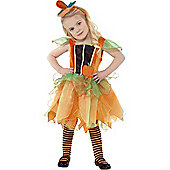 Pumpkin Fairy - Toddler Costume 3-4 years