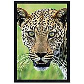 Panthera Onca Black Wooden Framed A Jaguar's Hypnotic Stare Poster