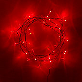 40 Red LED Indoor Fairy Lights