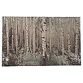 Silver birch scene with silver foil, canvas 50x80