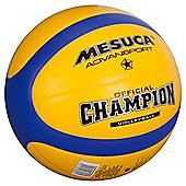 Tesco Volleyball