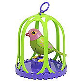 Digibirds With Hanging Cage