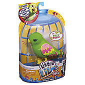 Little Live Pets Bird Silly Billie