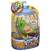 Little Live Pets Bird Silly Billie