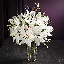Finest White Oriental Lily Bouquet