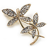 Delicate Crystal Butterfly Brooch (Gold Plated)