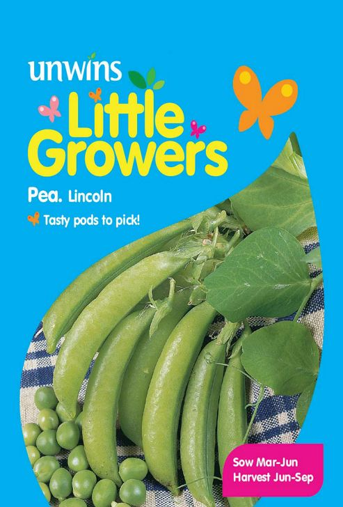 Little Growers Pea Lincoln