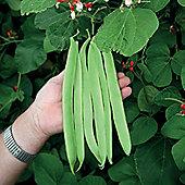 Runner Bean 'St George' - 1 packet (40 runner bean seeds)