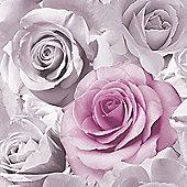 Madison Rose Floral Wallpaper - Pink - 119505