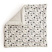 BabyDan Reversible Play Mat Tarok and Classic Mint