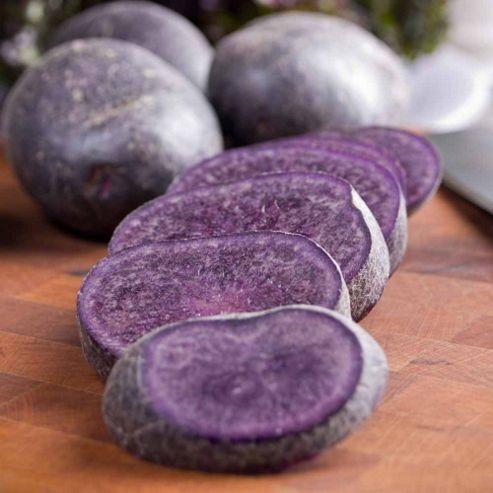 Potato 'Salad Blue' - 10 tubers