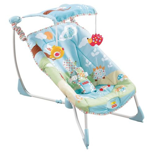 Fisher-Price Soothe Go Bouncy Seat