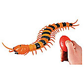 Real RC Centipede
