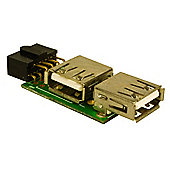 Internal USB Plate for Motherboard Pins
