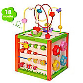 EverEarth Wooden 5 in 1 Garden Activity Cube 18+ months