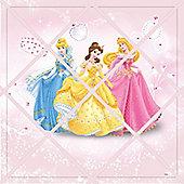 Disney Princess Photo Board