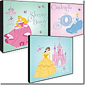 Disney Princess Box Art - Set Of Three Canvas Art