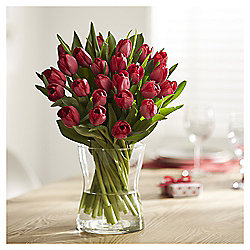 Double Dozen Red Valentine's Tulips