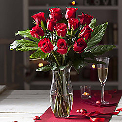 True Love Dozen Luxury Red Roses