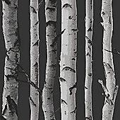 Birch Trees Wallpaper - Black and Silver - Fine Decor