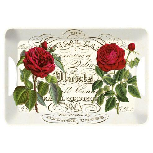 Tesco Botanical Red Rose