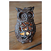 Fallen Fruits Owl Lantern