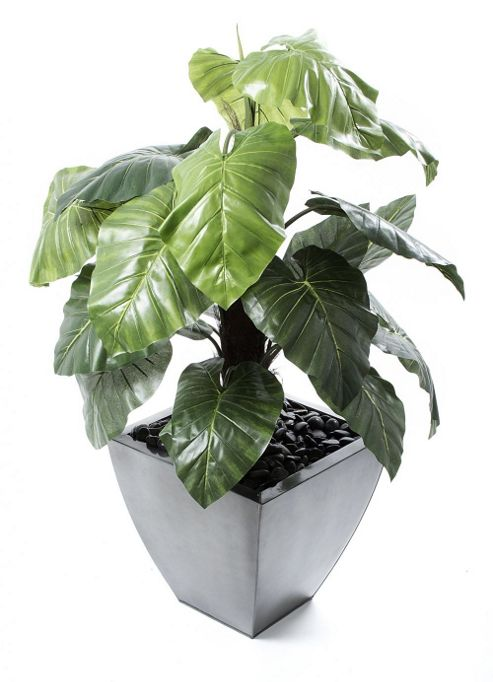 buy artificial 3ft philodendron swiss cheese plant from. Black Bedroom Furniture Sets. Home Design Ideas