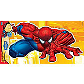 Spiderman 3D Large Wall Element