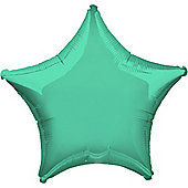 Wintergreen Star Balloon - 19' Foil (each)