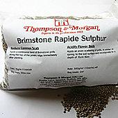Brimstone Rapide - 1 x 600g pack