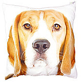 Puckator Beagle Photo Design Scatter Cushion 49x49cm