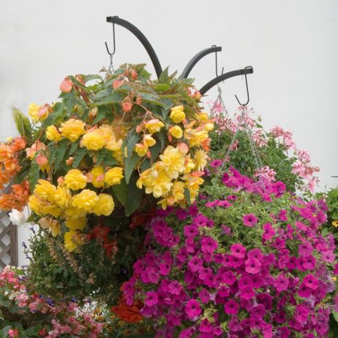 Hanging Basket Stand - 1 stand