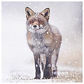 Winter Fox Canvas 35x35