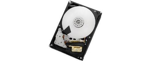 D-LINK 1TB Hitachi HDD for Non-IO intensive purposes, for integration into SAN & NAS Products
