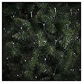 160 Multifunction Net LED Christmas Lights, White