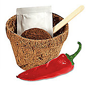 Grow Me Hot Stuff - Grow Your Own Chilli Plants