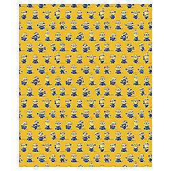 Despicable Me Rollwrap 2m