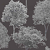 Woodland Trees Wallpaper - Black and Silver - FD40668