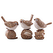 Set of Three Realistic Christmas Bird Ornaments with Gold Finish