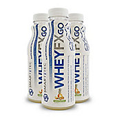 Smart-Tec Whey FX GO - Tropical Fruit Fusion