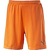 Puma Stadium Gk Short - Orange